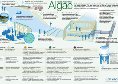Algae Alert and Action Plan low res